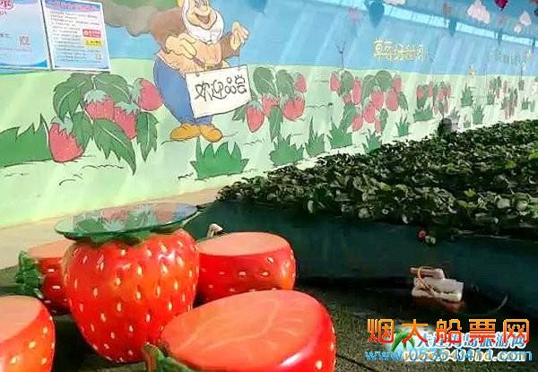 龙德李第五届草莓文化采摘节